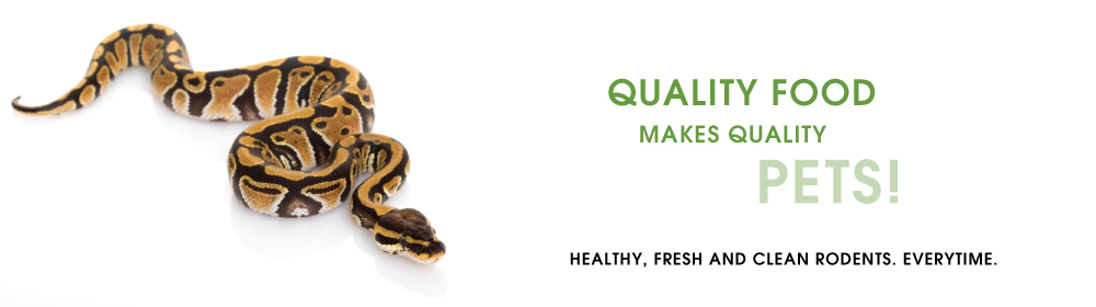 Frozen Rodents, Feeder Insects & Snake Food For Sale